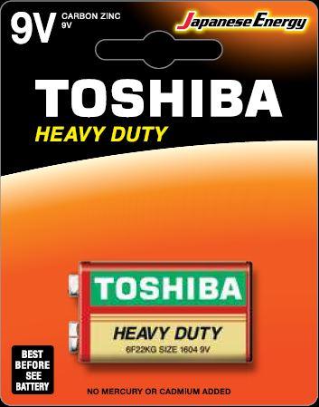 Toshiba 6F22 BP1